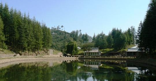 Thanedar Hill Station Near Shimla